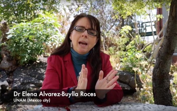 Dr Elena Alvarez Buylla